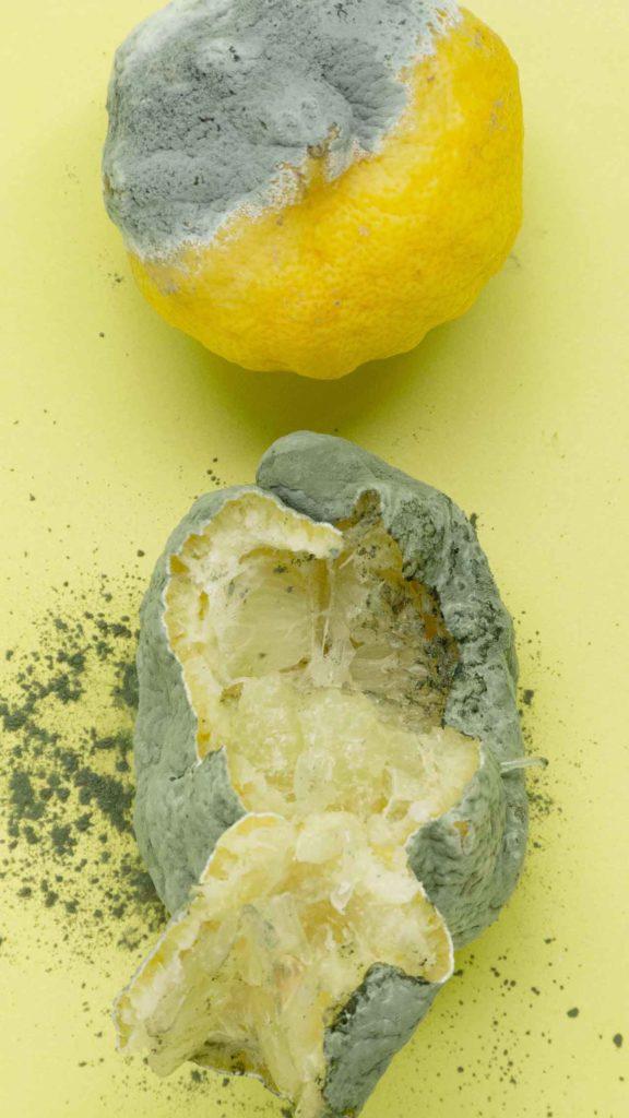 Limones podridos